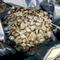 bag full of gemstones (bag1)