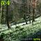 Mix Tape #44 : Spring
