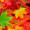 Jarno - Autumn Mix 2014