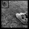 38 AM | listenin to ur heart.beatz ... (awakened desires edit)