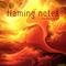 Flaming Notes