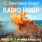 Sanctuary Forest Radio Hour 10/29/20