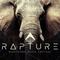 Rapture Music Festival - Podcast