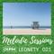 Leonety - Melodic Sessions 025 on DI.fm