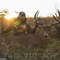 Take Aim Outdoors TAO-211 Deer and Land Management with Joe Sir