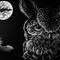 Owl Chill ...  @Padvalas Rave