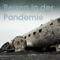 Reisen in der Pandemie. Wo bleibt das Geld? (Teil 1) - 23.04.2021 - Florian Furrer