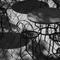 Sortir du trou (Chroniques de terrasse) EXTRAITS