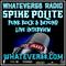 Spike Interview Paul Bakija 4.5.21