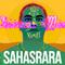 VICARIOUS MAN - SAHASRARA