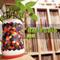 AmiRadio #3 - Greek, Jazz, Joni Mitchell, Soundtracks, Middle-Eastern Rock and more! All-Analog Mix!