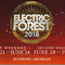 Road to EF 2018 - 4.20.18 mix - happy holidayz forest family