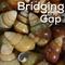 Bridging the Gap~July 16th, 2019: Nā Kani o ka ʻĀina