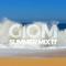Summer Mix 17