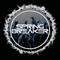 SpringBreaker - Mixset May 2k16