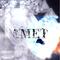 [Incubator] - AMET - 19/07/2017