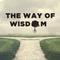 Wisdom in Conflict - The Way of Wisdom
