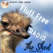 The Shed #6 - Fluff Free Radio