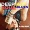 NU DISCO JAZZ BLUES FUNKY BY Chris Prado DJ