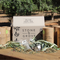 Stone & Grove Olive Tea on AFO LIVE