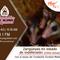 Zarigüeyas en estado de indefensión: Fundación FUNDZAR