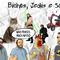 44 - Bichos, Jedis e Scooters