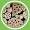 Jeanne Delaurent - Favoriser la biodiversité, l'effet de bordure (FR)