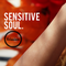 The Very Sensitive Soul Selection w/ Ding