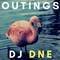 Outings with DJ DNE vol. 2
