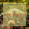 Mixcloud Monday: Serreconcerten