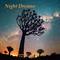 Night Dreams