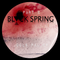 BLACK SPRING Part 2 mixed by Jools Palmer