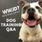 Avoiding Conflict, What Would Jeff Do? Dog Training Tip of the Day #135