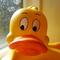 Too Many Ducks - CykZero [Original RAW]