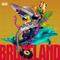 Bruceland #37