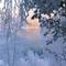 Groov Mekanik - Winter Warmup