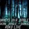 JOURNEYS INTA JUNGLE 2...ROKO LIVE...(Tracklist & D/L)....