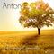 Anton E - Dreaming Capacities 005 {Unreleased}