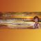 The Kornelia Stephanie Show: Living Heaven on Earth: Project Heaven on Earth with Martin Rutte