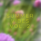 Summer Vibes Vol. 2