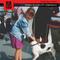Petting Dogs 05 w/ Jasmín @ Red Light Radio 11-18-2019