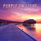 MK-Ultra - Purple Twilight