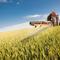 Céltalan tervezés jellemezte az unió agrárpolitikáját? (Hangoló 2019. 08. 26.) - 1.