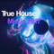 True House Music 2017 (Mixed By Roger Dj)
