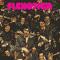 Flexotica Mix