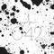 KHRAMTSOV -Vibes ON 042
