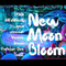 New Moon Bloom [Live Set]