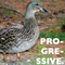 Duck Progressive House Mix