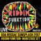 Riddim Funktion - Goa Sunsplash 2017 - Full Main Stage Set (LIVE)