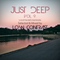 Just Deep [Vol.9] - live at Kacsakő, Szentendre (Selected & Mixed By Low Contrast)